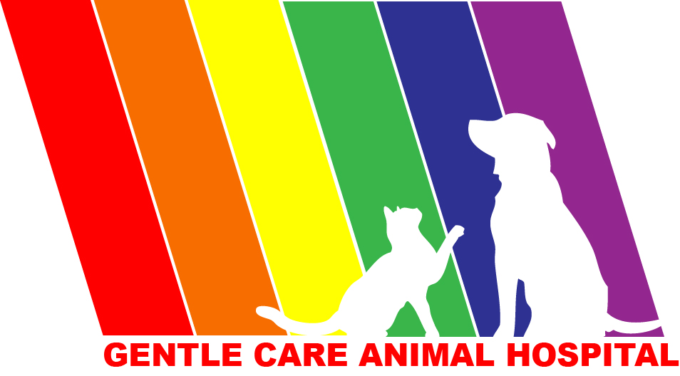 Gentle Care Animal Hospital Selects Vetter Software's Cloud Practice Management Software